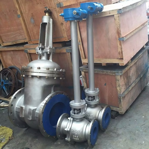 Expansion stem ball valve 150mm PN16 A351 CF8