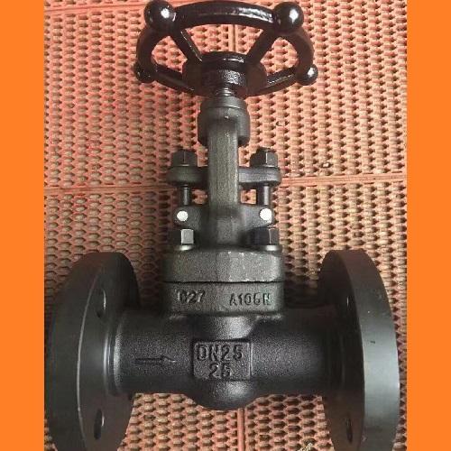 Flanged Gate Valve  DN 25 PN 25 A105N Bolted Bonnet Handwheel