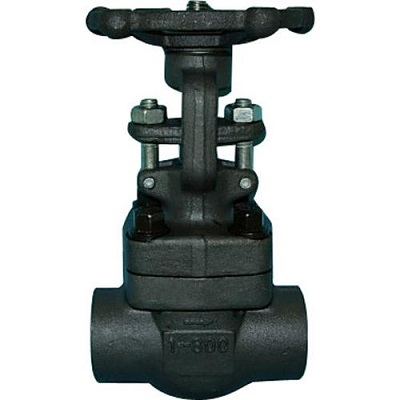 Forged Gate Valve Socket Weld 1 inch 800 LB A105 Bolted Bonnet