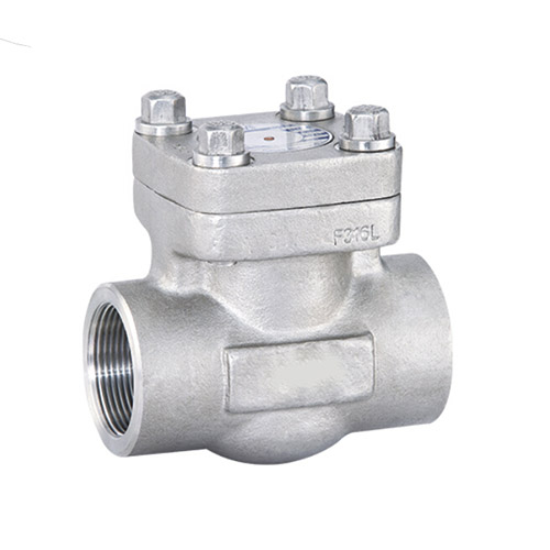 Socket Weld Forged Steel Swing Check Valve, API 602, 2IN, CL800