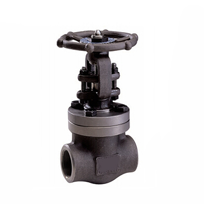 API 602 Bolted Bonnet Forged Gate Valve, 2 Inch, 800 LB, BW