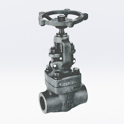 Duplex Stainless Steel Forged Gate Valve, BS 5352, 1/2-2IN, CL800