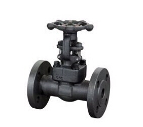 F321 Forged Gate Valve, API 602, 1 Inch, 150 LB-2500 LB, Threaded