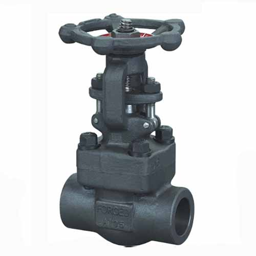 F5 Forged Alloy Steel Gate Valve, API 602, 1/2IN-2IN, CL150-CL1500