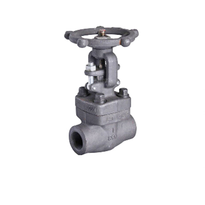A105N High Temperature Forged Globe Valve, 2IN, CL800, NPT Threaded