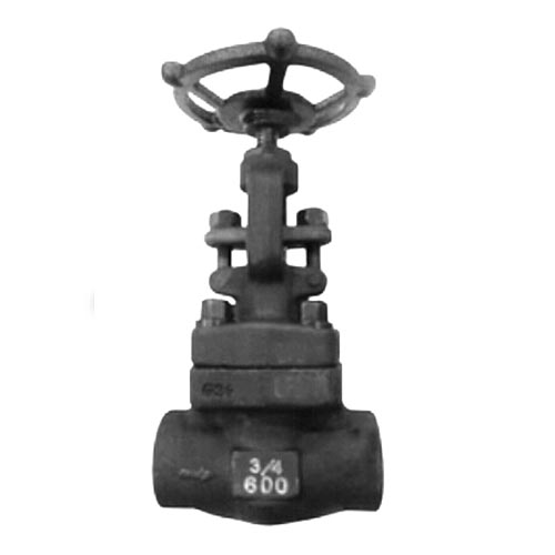 F51 Forged Globe Valve, DIN 3352, 1-1/2IN, CL150-CL2500, BW End