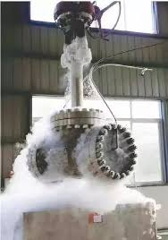 Quality Inspection of the Cryogenic Valve