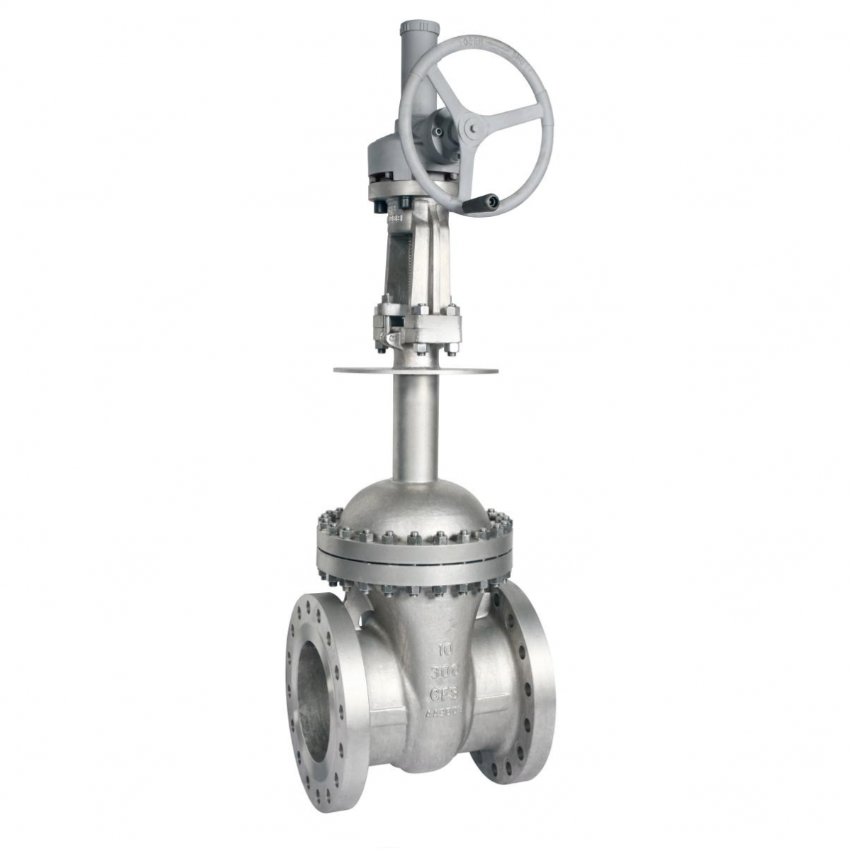 Cast Steel Cryogenic Gate Valves, CF8, DN250, PN50, Extended Bonnet
