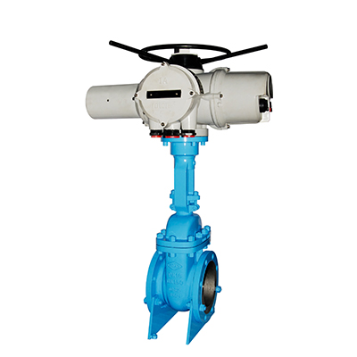 API Gate Valves